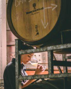 Boschendal Harvest Diary Update #5